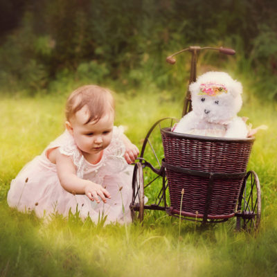 Baby Photographer in Medford New Jersey