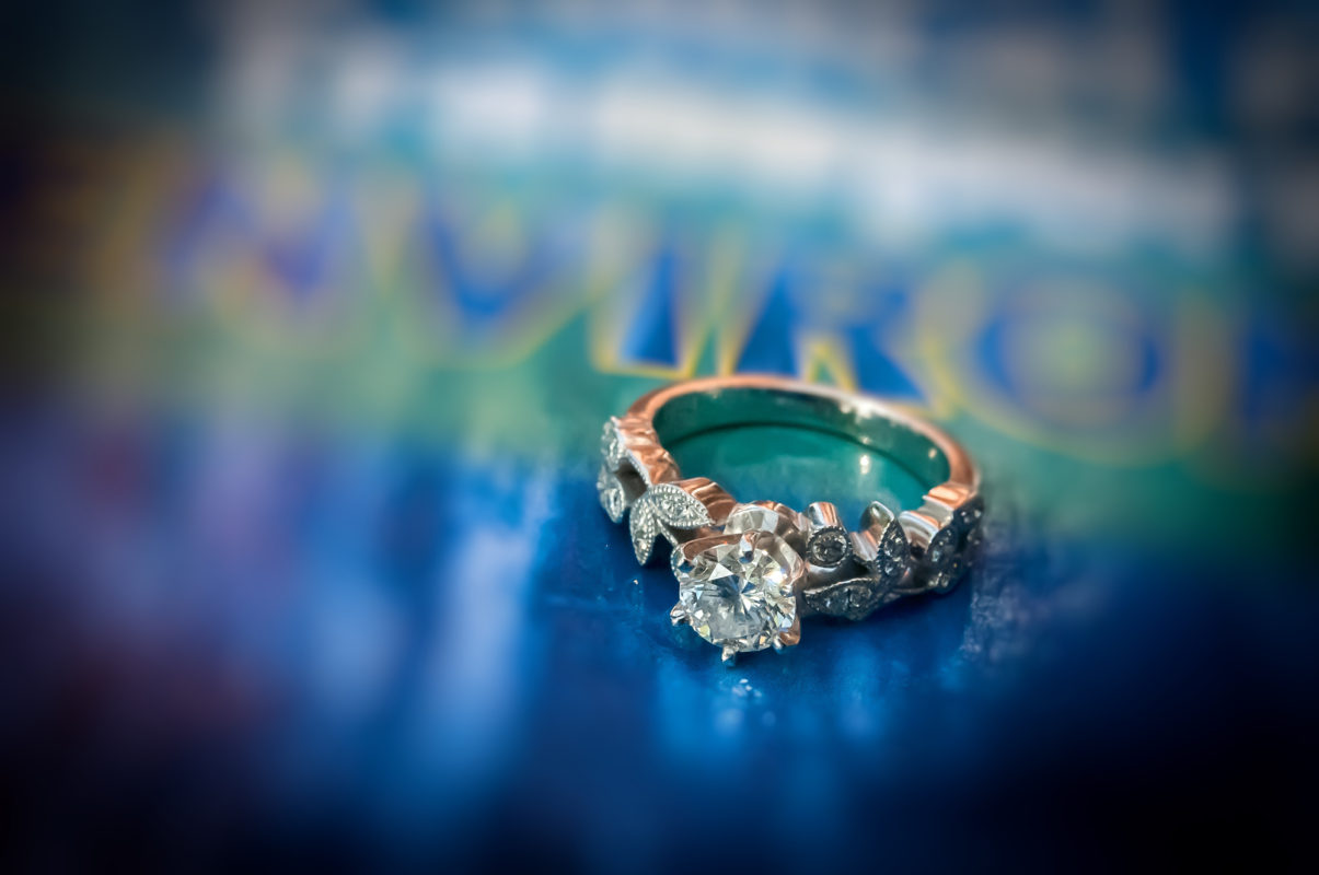 Engagement Photographer in Marlton New Jersey