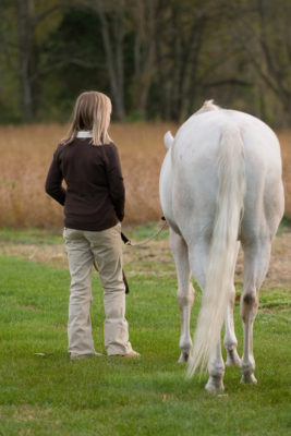 Equestrian Photographer in South Jersey