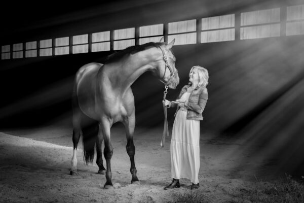 Equestrain Photography in Medford New Jersey